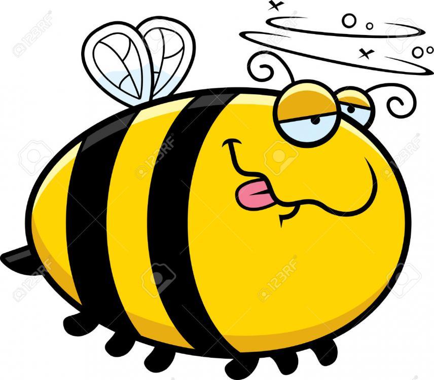 5a1b0cf4d4bc1_42995493-Une-illustration-de-bande-dessin-e-d-une-abeille-regardant-ivre--Banque-dimages.thumb.jpg.76f6746bab4b10f6b6bafd86116c2781.jpg