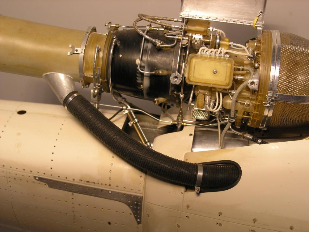 P1010018 (3).JPG